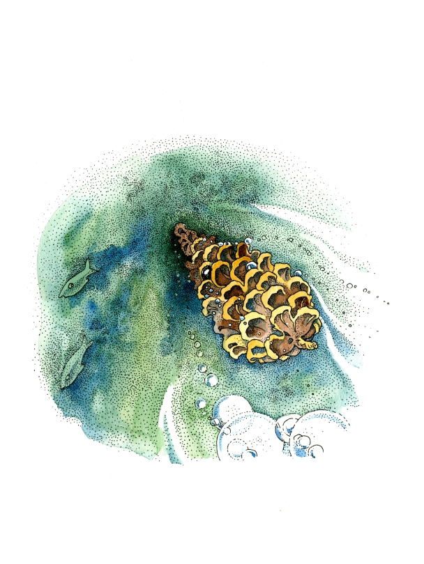 Pointillism, ink and watercolor children's book illustration of a pine cone hedgehog swimming in green sea with small fish by russian artist Yelizaveta Bakhtina in Olympia WA. From her book The Magic Traveling Bunk Bed, an ethnically diverse character children's book art, diversity, diverse art, interior design, art collector, new art, emerging artist, illustrator, russian art. Prints for sale in Olympia, Seattle, fine art.